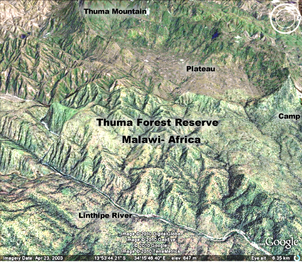007 thuma forest rugged with locations